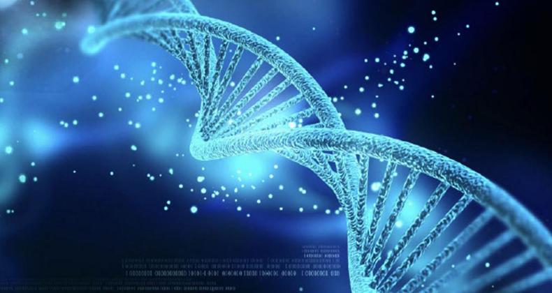 UV-C žiarenie ničí baktérie a vírusy.
