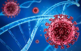 Germicídne žiarenie zabíja vírusy, baktérie, plesne a iné patogény.